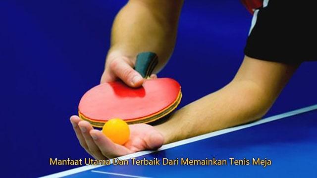 Manfaat Utama Dan Terbaik Dari Memainkan Tenis Meja