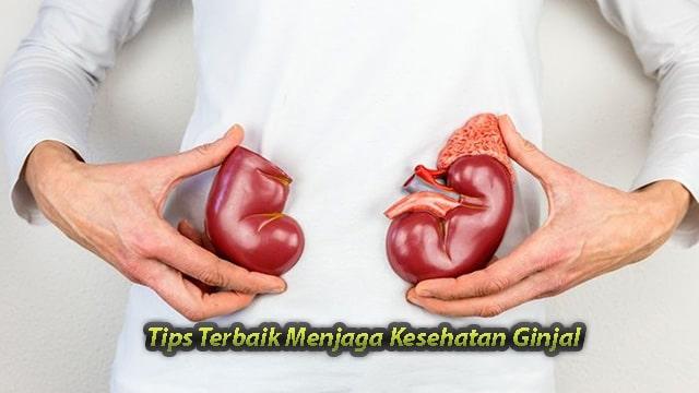 Tips Terbaik Menjaga Kesehatan Ginjal